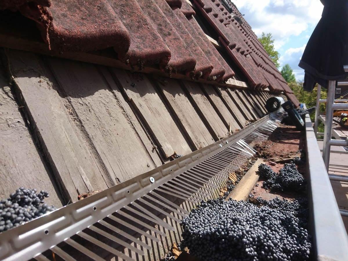 Dakpannen Met Zonnepanelen : In bovensmilde hebben wij oude dakpannen vervangen door prachtige